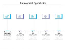 Employment Opportunity Ppt Powerpoint Presentation Icon Example Cpb