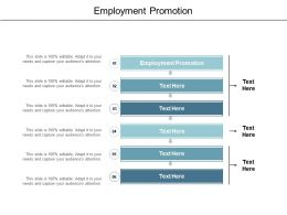 Employment Promotion Ppt Powerpoint Presentation File Styles Cpb