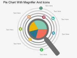 en Pie Chart With Magnifier And Icons Flat Powerpoint Design