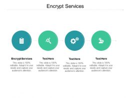 Encrypt Services Ppt Powerpoint Presentation Professional Cpb