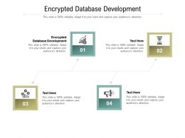 Encrypted Database Development Ppt Powerpoint Presentation Infographics Outfit Cpb