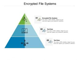 Encrypted File Systems Ppt Powerpoint Presentation Inspiration Graphics Pictures Cpb