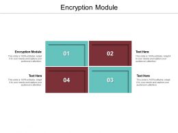 Encryption Module Ppt Powerpoint Presentation Slides Example Cpb