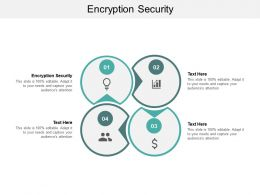 Encryption Security Ppt Powerpoint Presentation Icon Rules Cpb