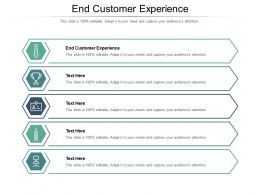 End Customer Experience Ppt Powerpoint Presentation Model Professional Cpb