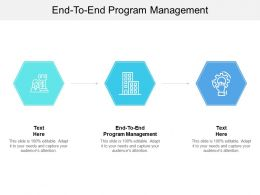 End To End Program Management Ppt Powerpoint Presentation Icon Outfit Cpb