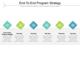 End To End Program Strategy Ppt Powerpoint Presentation Gallery Graphics Pictures Cpb
