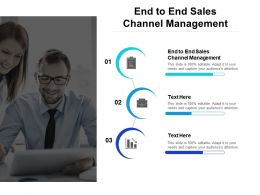 End To End Sales Channel Management Ppt Powerpoint Presentation Professional Icons Cpb