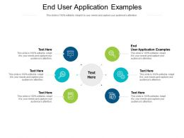End User Application Examples Ppt Professional Demonstration Cpb