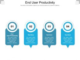 End User Productivity Ppt Powerpoint Presentation Summary Icons Cpb