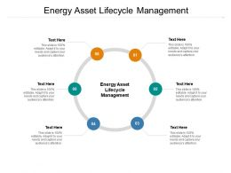 Energy Asset Lifecycle Management Ppt Powerpoint Presentation Pictures Example File Cpb