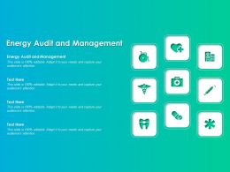 Energy Audit And Management Ppt Powerpoint Presentation Styles Example