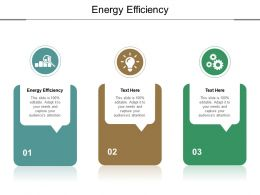Energy Efficiency Ppt Powerpoint Presentation Professional Master Slide Cpb