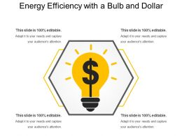 Energy Efficiency With A Bulb And Dollar