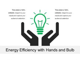 Energy Efficiency With Hands And Bulb