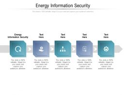 Energy Information Security Ppt Powerpoint Presentation Icon Example Cpb