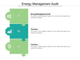 Energy Management Audit Ppt Powerpoint Model Infographic Template Cpb