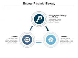 Energy Pyramid Biology Ppt Powerpoint Presentation Slides Format Cpb