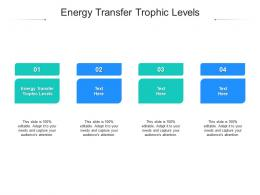 Energy Transfer Trophic Levels Ppt Powerpoint Presentation Inspiration Graphic Tips Cpb