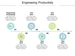 Engineering Productivity Ppt Powerpoint Presentation Infographic Template Graphics Tutorials Cpb