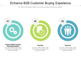 Enhance B2b Customer Buying Experience Ppt Powerpoint Aids Icon Cpb