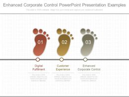 Enhanced Corporate Control Powerpoint Presentation Examples