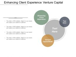 Enhancing Client Experience Venture Capital Model Vulnerability Management Cpb