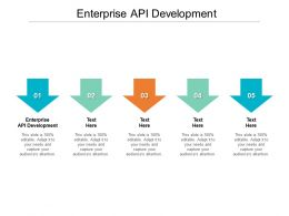 Enterprise API Development Ppt Powerpoint Presentation Outline Pictures Cpb