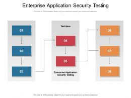Enterprise Application Security Testing Ppt Powerpoint Presentation Styles Clipart Cpb