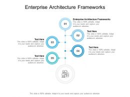 Enterprise Architecture Frameworks Ppt Powerpoint Presentation Infographics Information Cpb