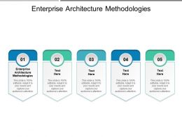 Enterprise Architecture Methodologies Ppt Powerpoint Presentation Outline Icons Cpb
