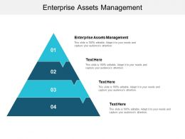 Enterprise Assets Management Ppt Powerpoint Presentation Outline Structure Cpb