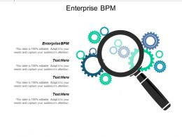 Enterprise Bpm Ppt Powerpoint Presentation Icon Gridlines Cpb