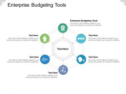 Enterprise Budgeting Tools Ppt Powerpoint Presentation Layouts Design Templates Cpb