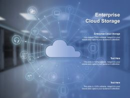 Enterprise Cloud Storage Ppt Powerpoint Presentation Portfolio Information Cpb