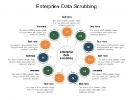 Enterprise Data Scrubbing Ppt Powerpoint Presentation Gallery Slideshow Cpb
