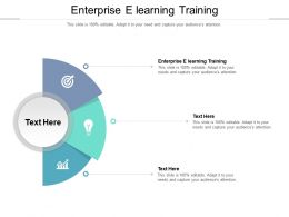 Enterprise E Learning Training Ppt Powerpoint Presentation Show Infographics Cpb