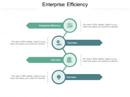 Enterprise Efficiency Ppt Powerpoint Presentation Icon Background Images Cpb