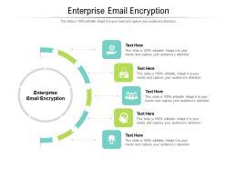 Enterprise Email Encryption Ppt Powerpoint Presentation Ideas Icons Cpb