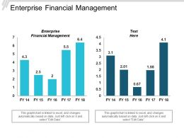 Enterprise Financial Management Ppt Powerpoint Presentation Gallery Background Cpb