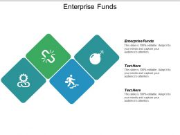Enterprise Funds Ppt Powerpoint Presentation Summary Example Cpb