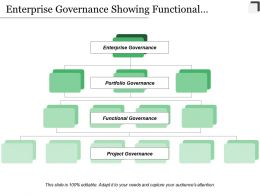 Enterprise Governance Showing Functional Portfolio Enterprise