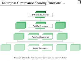 Enterprise Governance Showing Functional Portfolio Enterprise