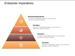 Enterprise Imperatives Ppt Powerpoint Presentation Gallery Samples Cpb