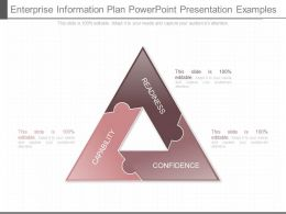 Enterprise Information Plan Powerpoint Presentation Examples
