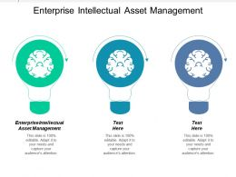 Enterprise Intellectual Asset Management Ppt Powerpoint Presentation Icon Layout Ideas Cpb