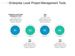 Enterprise Level Project Management Tools Ppt Powerpoint Presentation Infographic Cpb