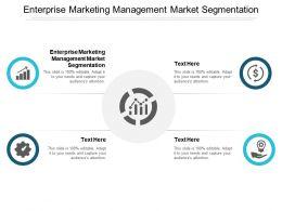 Enterprise Marketing Management Market Segmentation Ppt Powerpoint Presentation Show Graphics Design Cpb