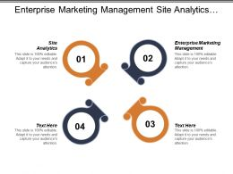 Enterprise Marketing Management Site Analytics Search Engine Marketing B2b Cpb