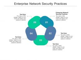 Enterprise Network Security Practices Ppt Powerpoint Presentation Summary Format Cpb